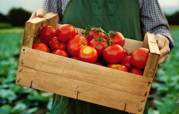 TOMATOES | Eat These Foods to Lower Blood Pressure